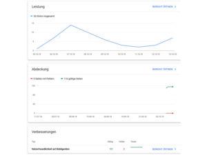 Mit der Google Search Console die Ergebnisse Prüfen